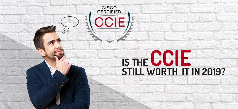 2019年全球有多少CCIE?-59学习网