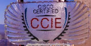 新版CCIE EI认证(企业基础架构)主要内容是什么?部分更新的话,旧版RS内容占比是多少?-59学习网
