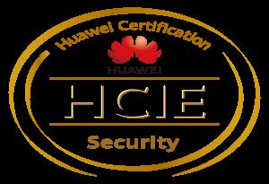 HCIE H12-731