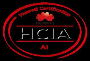 HCIA H13-311