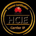 H13-161