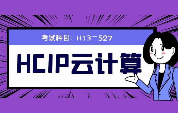 H13-527